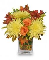 fsn-windy-autumn-day-bouquet-169.167.jpg