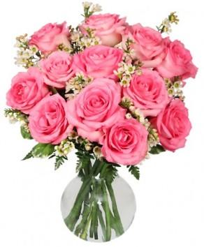 chantilly-pink-roses2.425