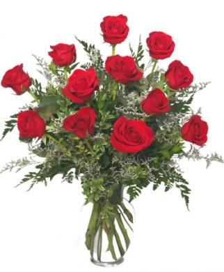 classic-dozen-roses2.425