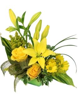 playful-yellow-flower-arrangement-AO043318.425