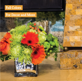 oct22_fall_colors_decor_image