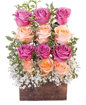 wall-of-roses-floral-design-RO00519.300